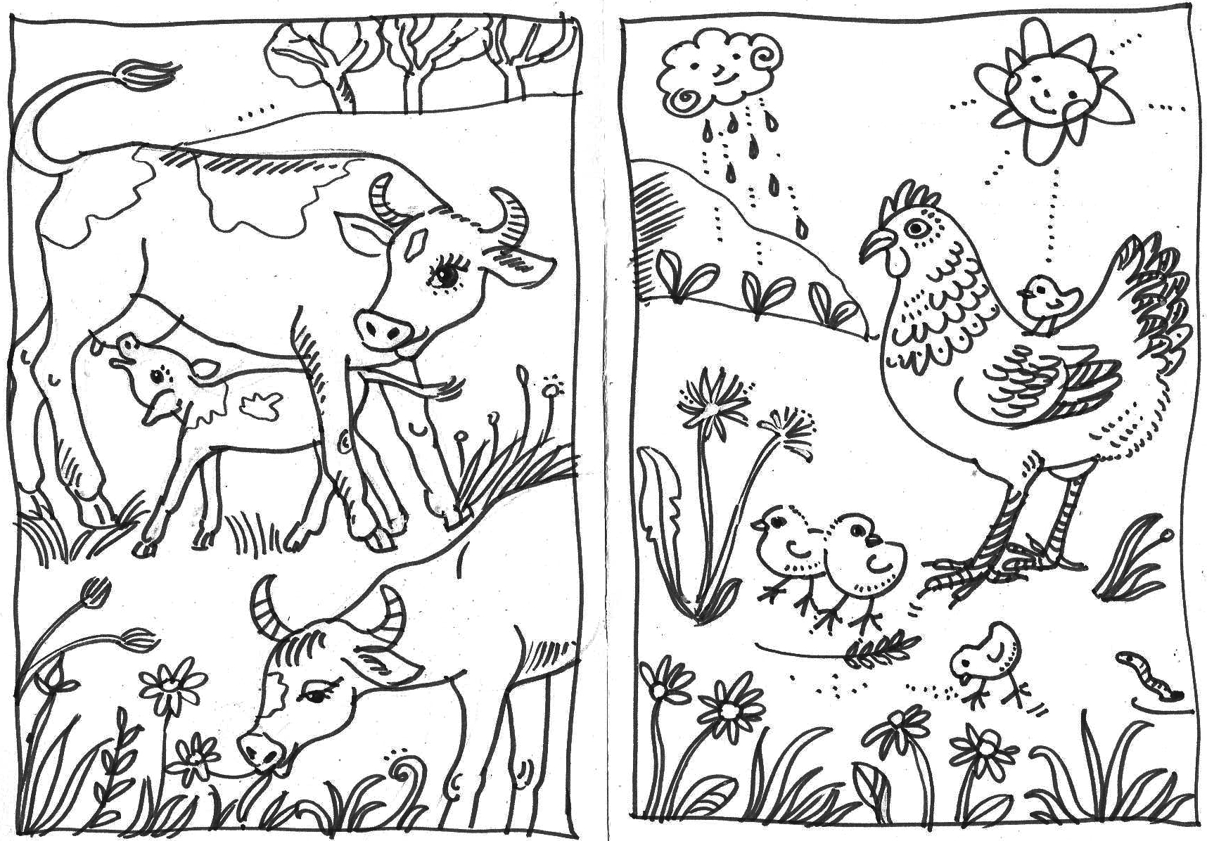 Colouring pictures for children